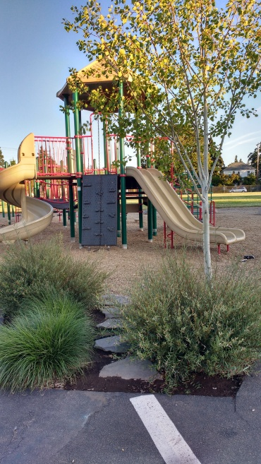 Planted edges, May Street Elementary, Hood River, OR