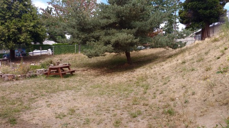 Slope from alley, looking north