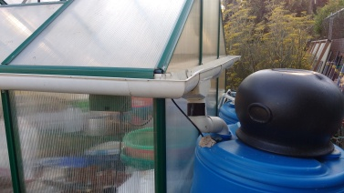Water catchment from greenhouse roof, Wedgwood Elementary