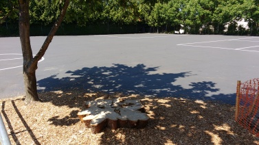 Stump for seating and play, West Woodlands Elementary