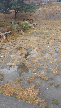 Compacted dirt, after first heavy fall rain