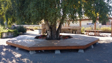 Seating (and tree protection), Roxbury P-Patch