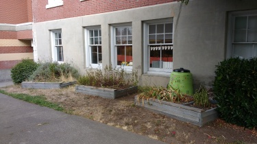 Raised beds at south entry